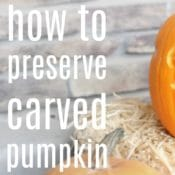 how to preserve carved pumpkin with bleach for Halloween