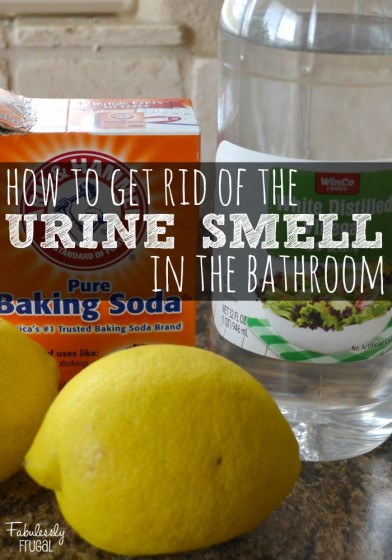 check out all of our other amazing homemade cleaning recipes how to get rid of that yucky urine smell in the bathroom