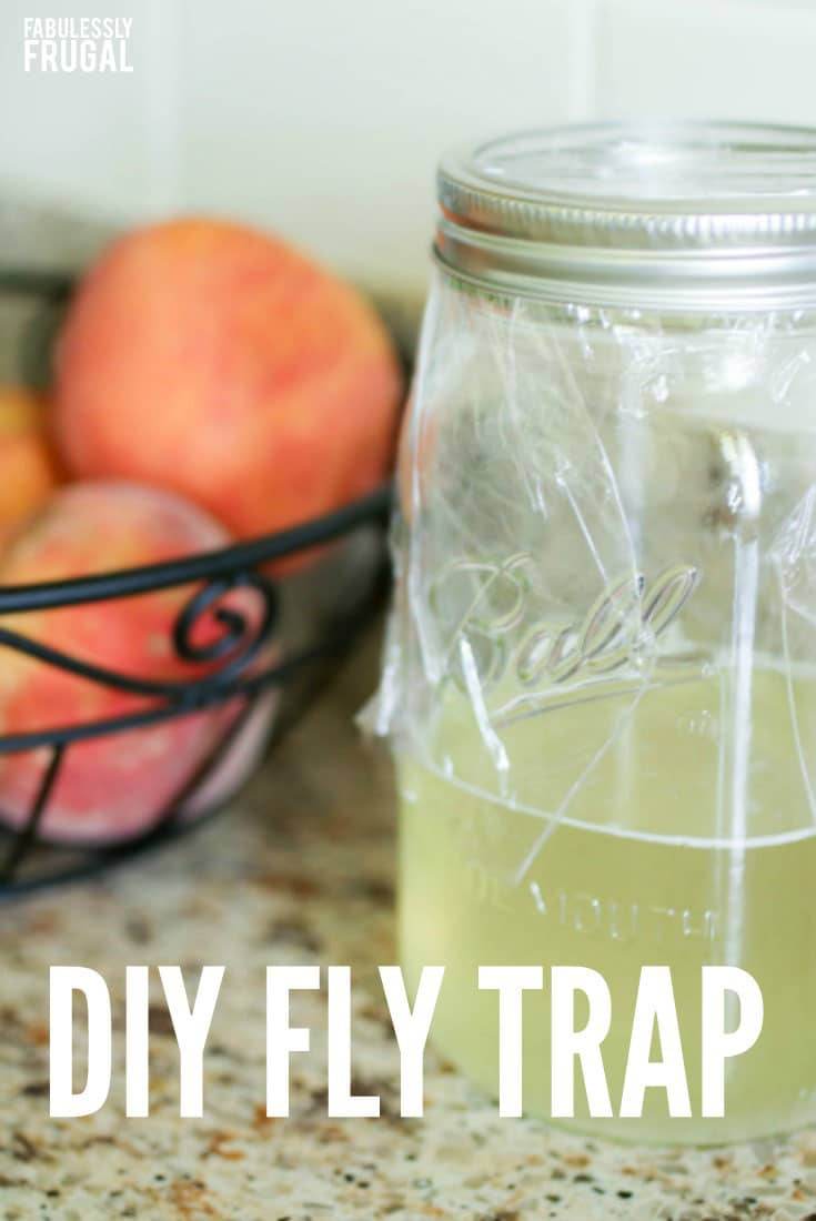 Goodbye House Flies - Make A Homemade Fly Trap - Fabulessly Frugal