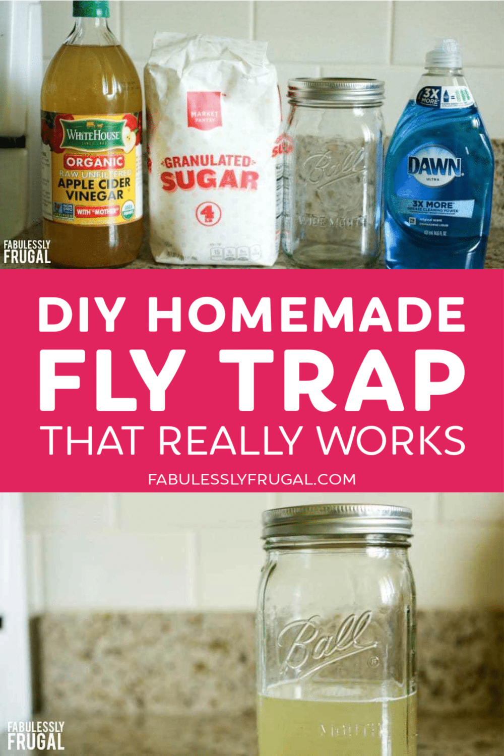 Homemade fly trap that really works pin