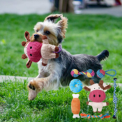 7-Pack Puppy Teething Small Dog Toys $7.20 After Code (Reg. $30) - FAB...